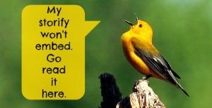 birds-primary-headerstorify